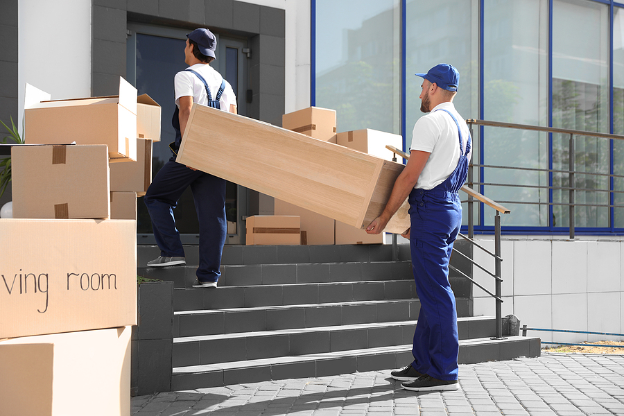 Male Liverpool removalists carrying shelving unit into new house